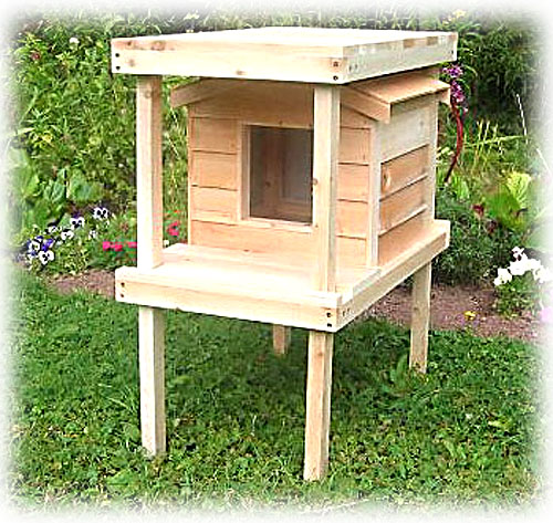 Platform Raised Cat House